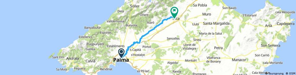Mallorca: Palma-Inca (IV)