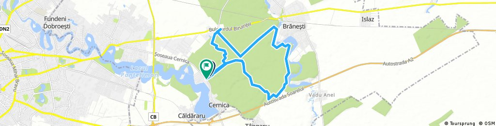 bike tour through Cernica