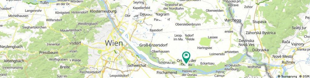 Orth-Wien-DWagram-Orth