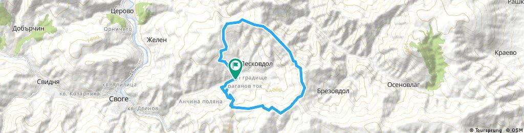 Около Лесков дол