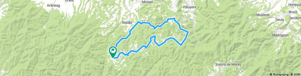 Maraton Zarand - 45,5 km