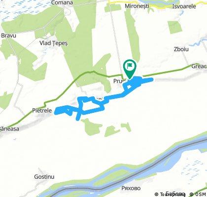 Maratonul Dunarii 2017 - Traseu Standard - Backup