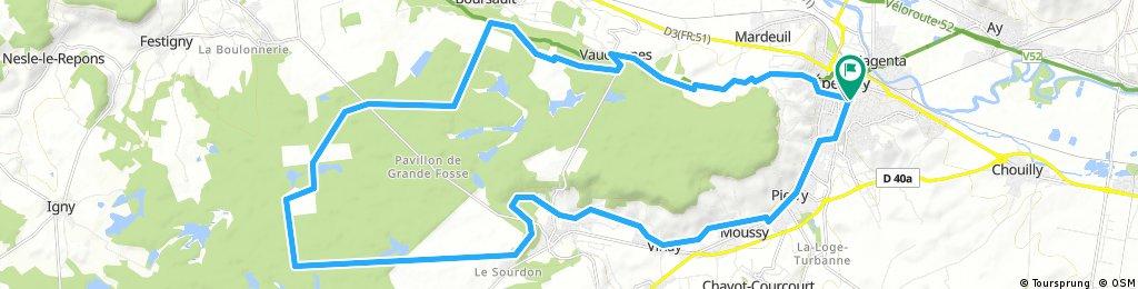 Saint Martin Ablis Forêt de Boursault