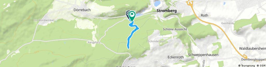 Stromberg FlowTrail WildHog