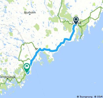 Scenic route Umeå to Husum