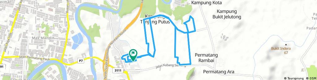Permatang Pauh Padi Field 12km