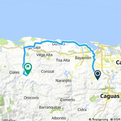 Guaynabo-Dorado-Morovis