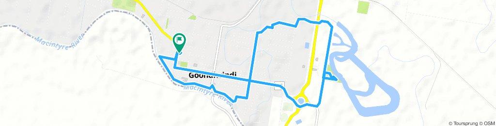 gundy loop