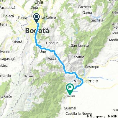 Bogota Acacias