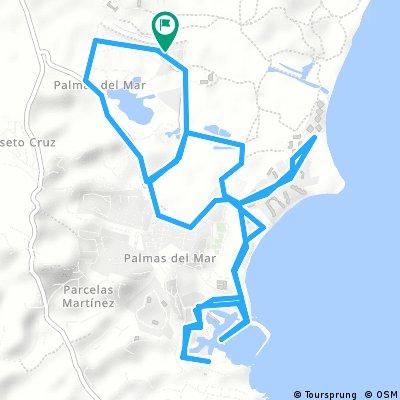 Palmas 2