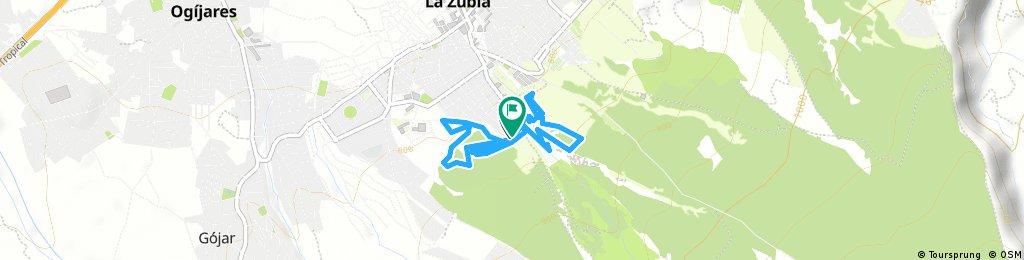 Cto. Rally LA ZUBIA oficial