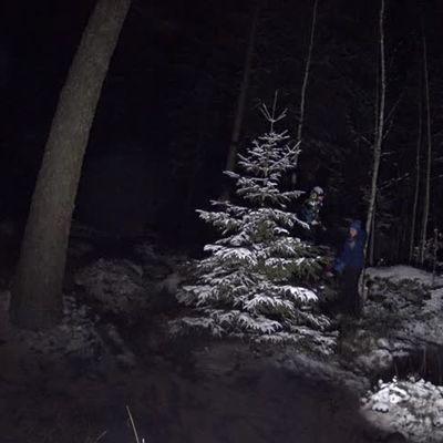 Hárs János, hóban, fagyban, sötétben