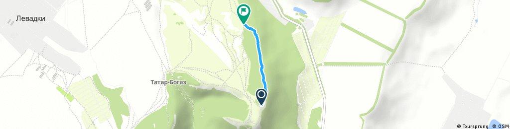 Таш-Джарган спуск через лес