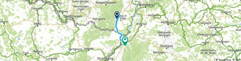 Pfalz T4