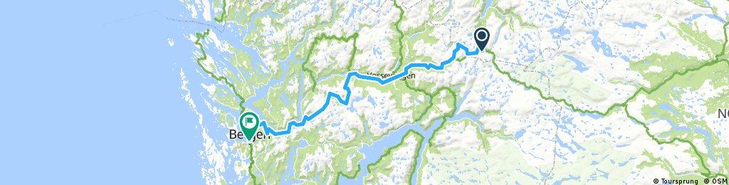 Myrdal - Bergen