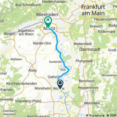 Rhein Test 2