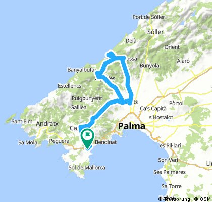 Globales Mimosa - Valldemossa - Port - Claret