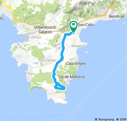 Globales Mimosa - Camí de Cala Figuera