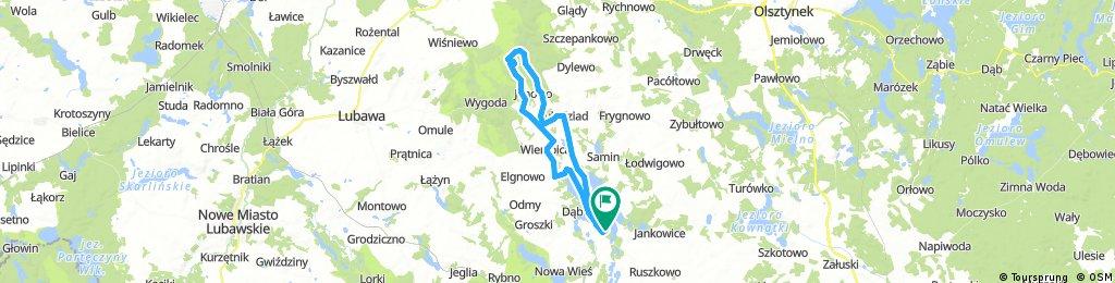 Dylewska Góra (312 m) z Dąbrówna