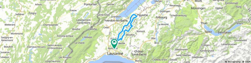 Gros de  Vaud / Forel