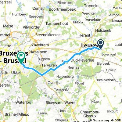 Leuven-Etterbeek car Leonard