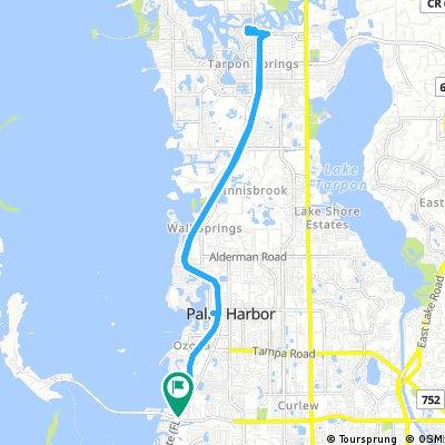 Honeymoon Island to Sponge Docks