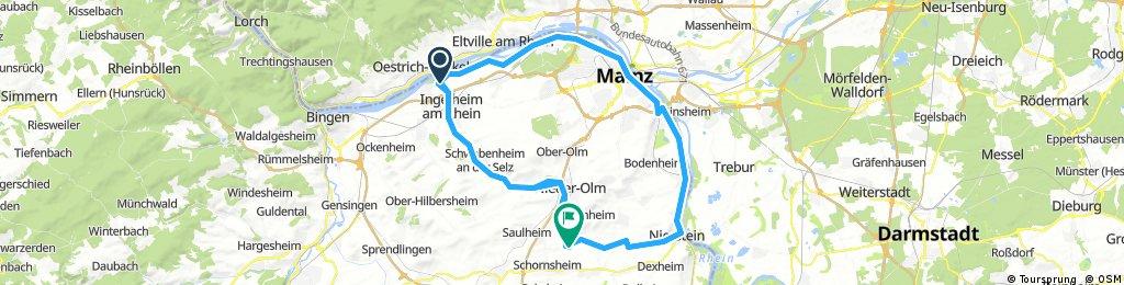Von Ingelheim quer durch Rhein-Hessen und über den Rhein zurück