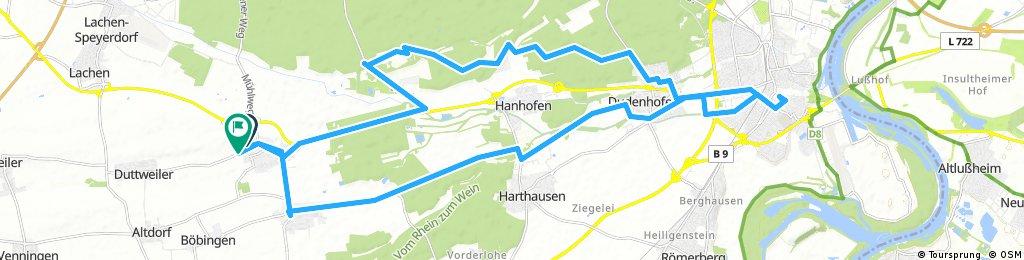 Speyer_Feld-Radwege