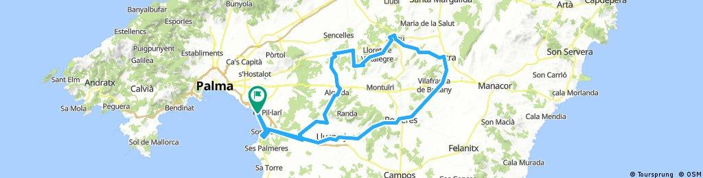 Mallorca (Arenal - Sineu Radrennbahn - Petra)