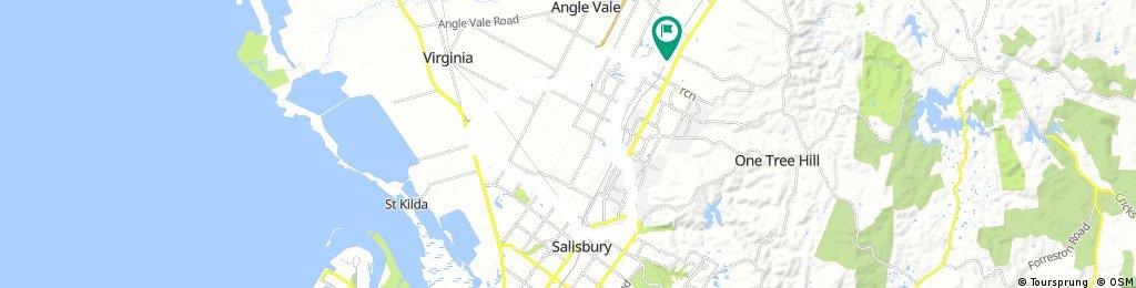 Salisbury loop