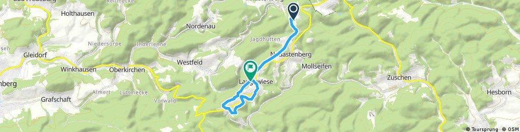 Winterwandern Grenzweg Kahler Asten - Langewiese - Hoheleye