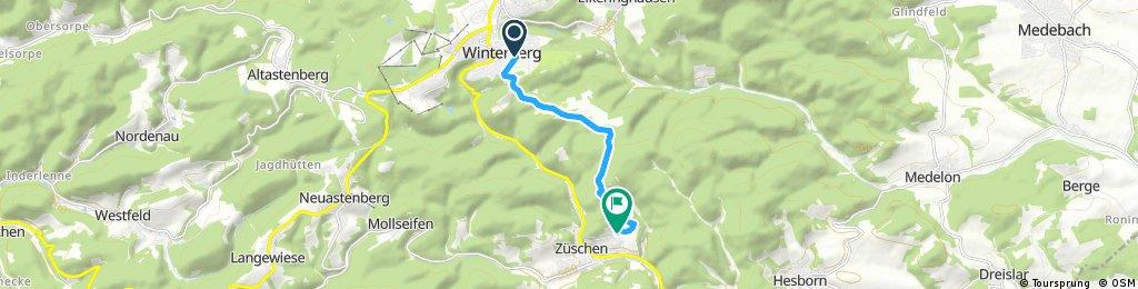Winterwandern von Winterberg nach Züschen