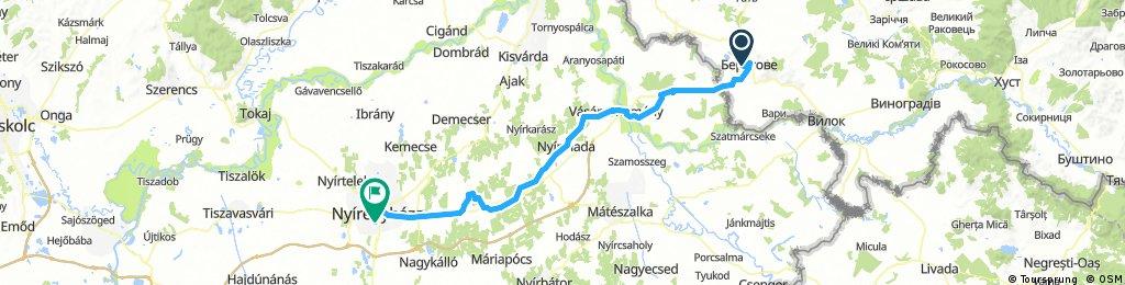 Берегово - Венгрия 1,5  день (Будапешт и Балатон)