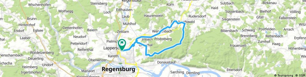 Regensburg - Bernhardswald - Kreuther Forst - Hohe Linie - Keilberg - Grünthal - Thanhof - Regensburg