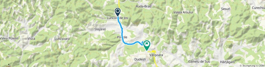 Luncoiu de Jos - Pasul Valisoara