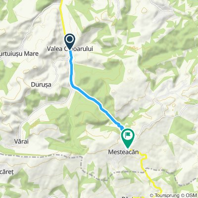 Valea Chioarului - Pasul Mesteacan