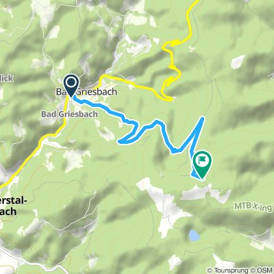 Xing T1 Zuweg Absbachhöhe