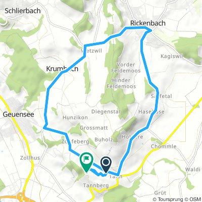 Tannberg - Rickenbach 12.8.km 340mu