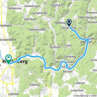 Neckartalradweg 7. Etappe: Langenthal-Heidelberg