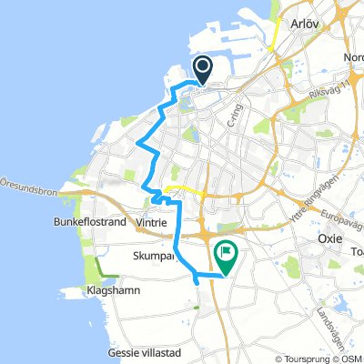 Lengthy Afternoon Ride In Malmö