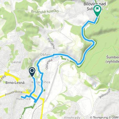 Easy Saturday Ride In Brno