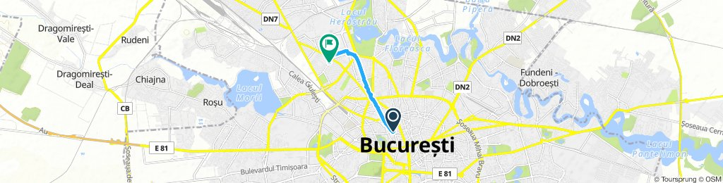 Short And Sweet Saturday Course In Bucharest