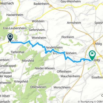 Mountainbike-Tour Fürfeld - Alzey