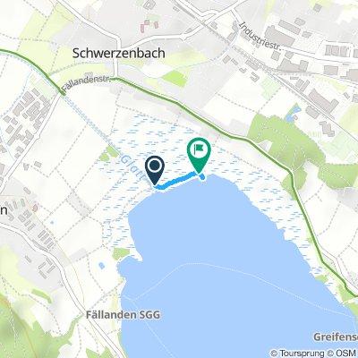 Slow Afternoon Track In Schwerzenbach