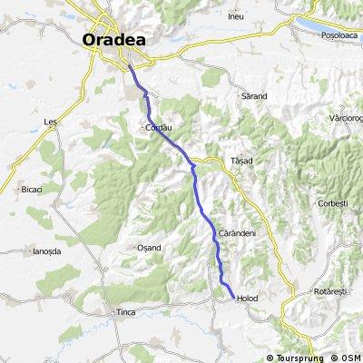Oradea - Lazareni - Holod