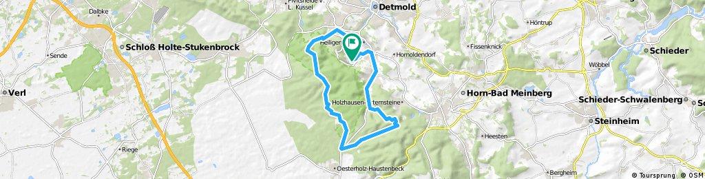 Rundtour Detmold-Schling-Hiddesen-Kreuzkrug-Berlebeck-Schling