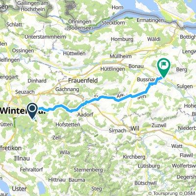 Winti -Weinfelden vaiante