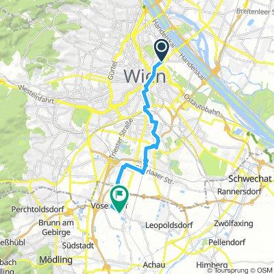 Wien rein