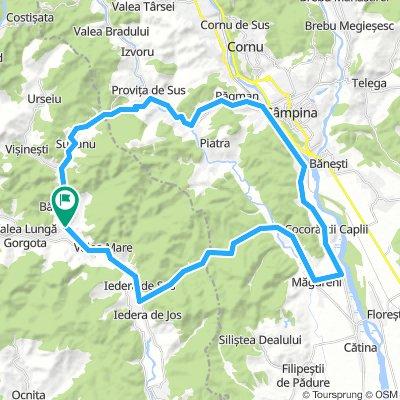 Valea Lunga - Poiana Campina
