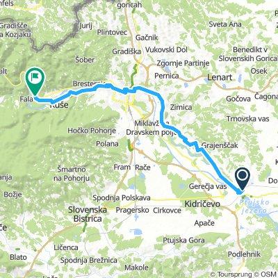 01 Ptuj - Maribor - Ruse - Selnica ob Dravi